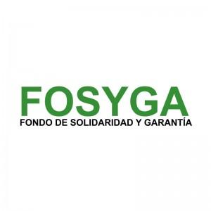 02 Fosyga