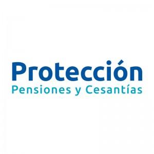 22 Proteccion